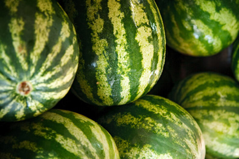 Watermelons_3